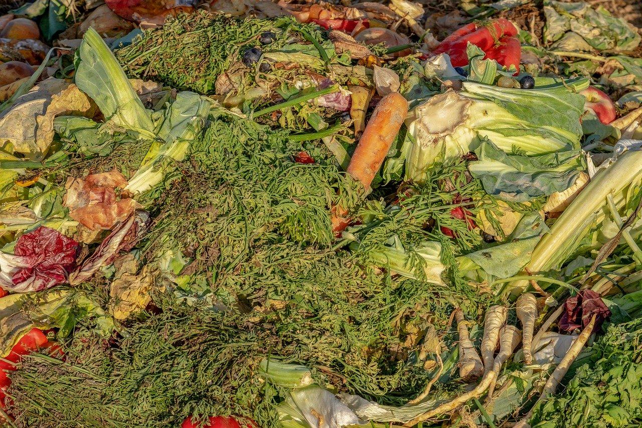 Danas je Međunarodni dan sprječavanja prekomjernog bacanja hrane