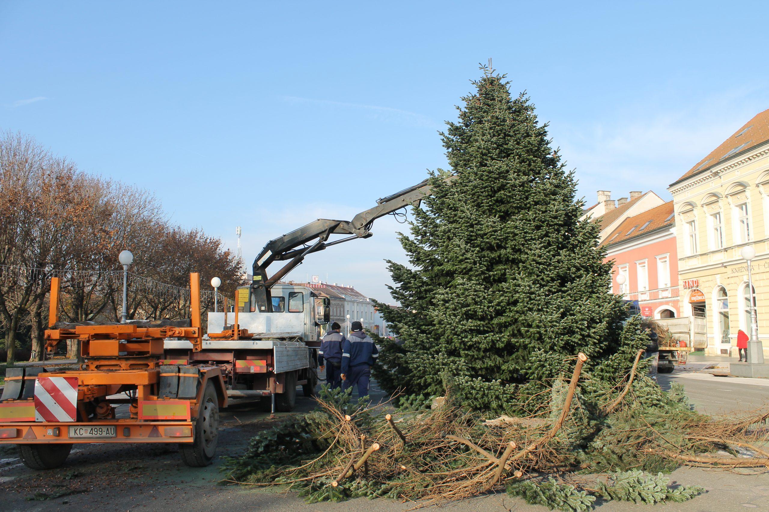 Na Zrinskom i Trgu bana Jelačića postavljena božićna drvca, donirali ih Koprivničanci