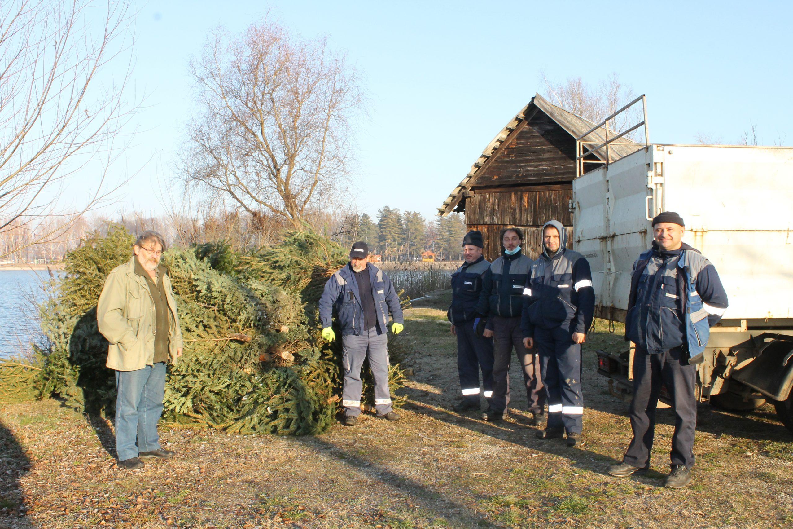 Stara božićna drvca služit će kao mrjestilišta na Šoderici i okolnim jezerima
